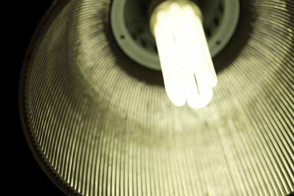 Image of a pendant light taken from below at the Macknade Cafe, Faversham